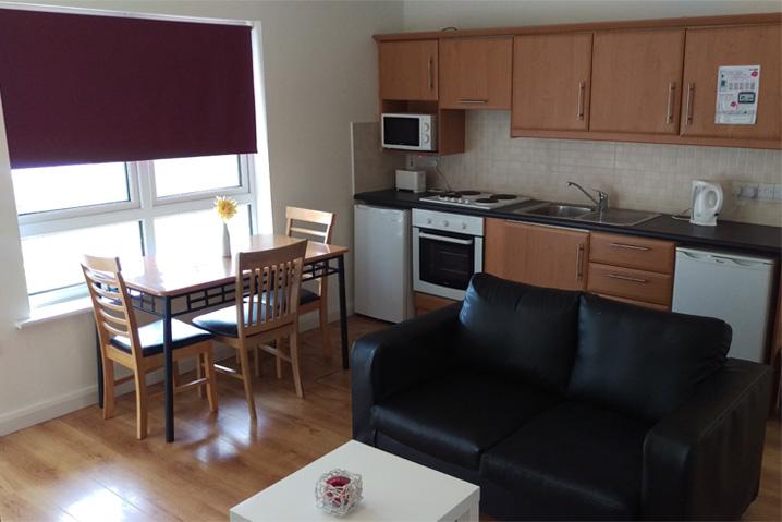 Thomond Village Sitting room / Kitchen